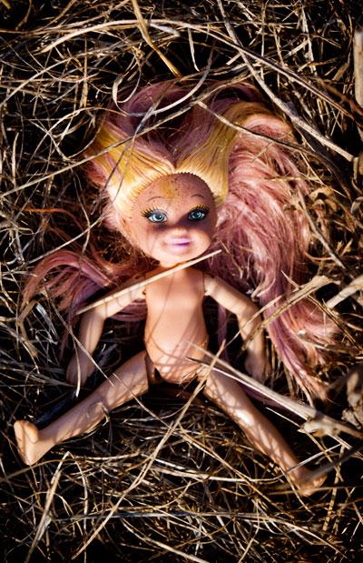 doll-grass