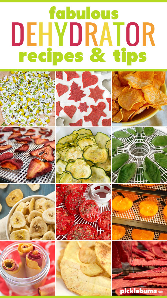 Try one of these fabulous dehydrator recipes and tips