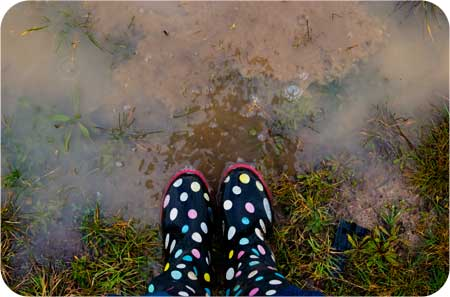 wandering wednesday jumping in puddles