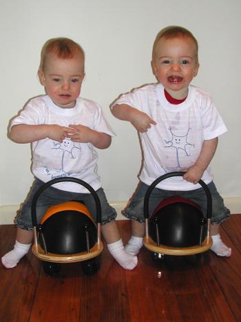 twins VIBeS