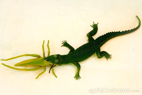 crocodile-eats-grasshopper