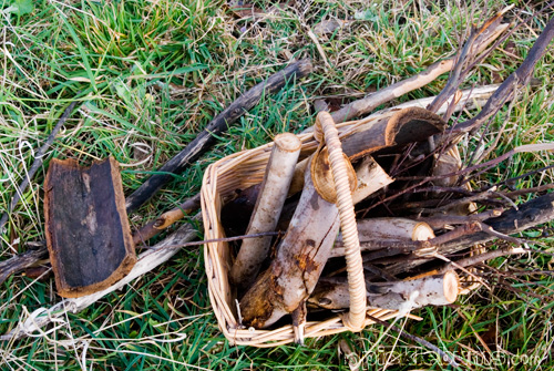 a basket of sticks to play with