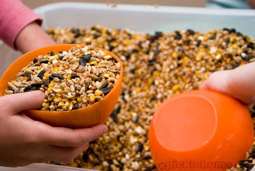 Sensory Play – A Tub Full of Seeds