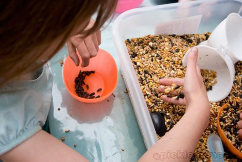 sesnory play seeds