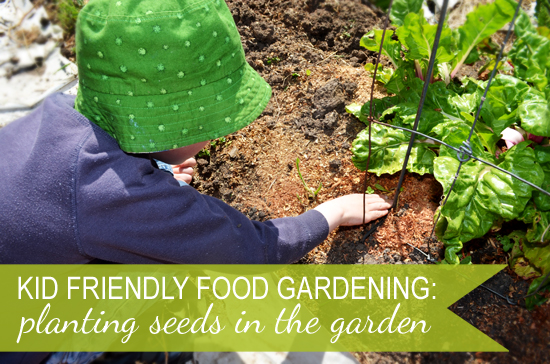 Planting Seeds in the Garden – Kid Friendly Food Gardening.