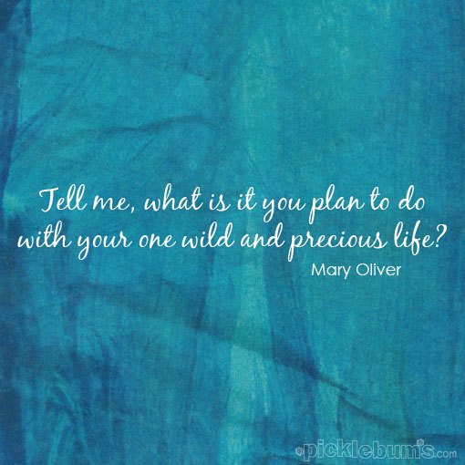 What Will You Do With Your One Wild and Precious Life?