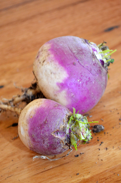 Adventures with Turnips! Making meat and veggie pasties, pastry wrapped packages of yumminess!