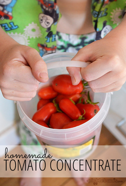 homemade tomato concentrate, along with some musings about whether cooking from scratch and home processing food is worth it...