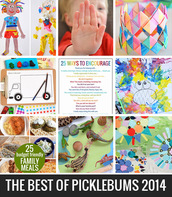 The most popular posts from Picklebums in 2014
