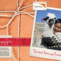 I bought you a llama!