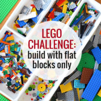 Flat Lego Chal