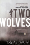 Chapter books by Aussie Authors - Two Wolves