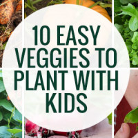 Ten Easy Veggies to Grow with Kids