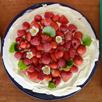 'Chuck it All in' Easy Pavlova Recipe