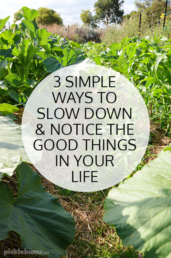 Simple ways to notice the good things in life