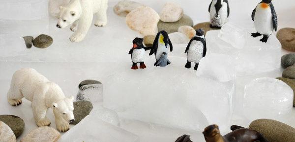 Polar Habitat Imaginative Play – Plus Book list and Craft ideas.