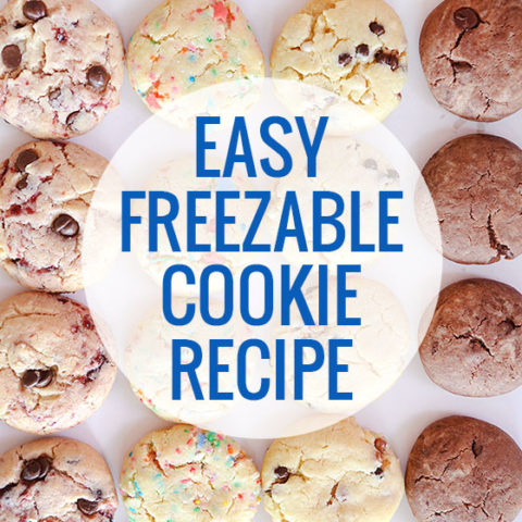 Easy Freezable Cookie Recipe